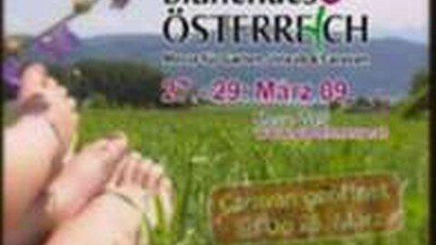 Werbung Messe Wels 2009