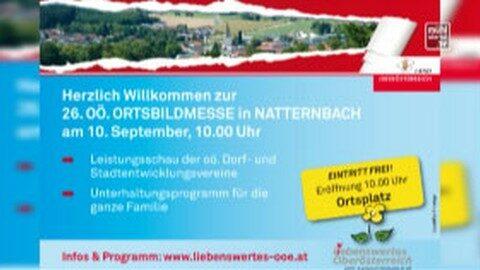 Ankündigung Ortsbildmesse 2017 in Natternbach
