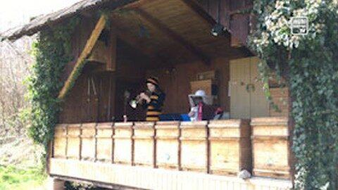 Teresa und Manuel Reisinger musizieren für die Bienen