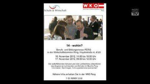 Ankündigung Berufsinfomesse in der WKO Perg
