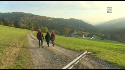 Wanderweg Stampfentalweg in St. Oswald bei Freistadt