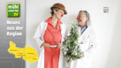 CliniClowns OÖ sorgen für vorweihnachtliche Freude
