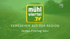 "Paul Katzmayr: ""I schau Mühlviertel.TV"""