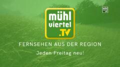 """Andreas Eckerstorfer: """"I schau Mühlviertel.TV"""""""