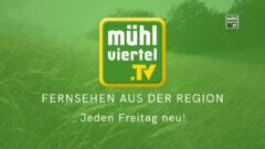 """Hermann Pammer, Wirt in Leopoldschlag """"I schau Mühlviertel.TV"""""""