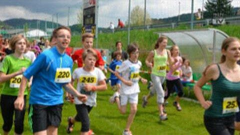 Freistädter Gymnasiasten sind tolle Läufer