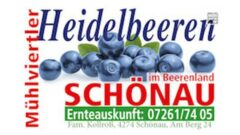 Heidelbeeren aus Schönau im Mühlkreis – Fam. Kollroß