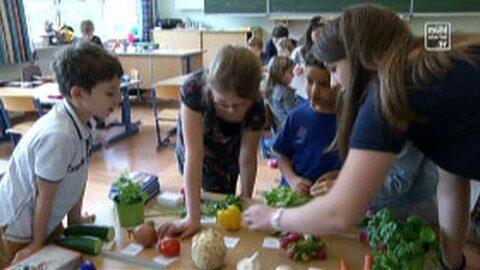 Schulprojekt HBLA Elmberg – Volksschule Helfenberg