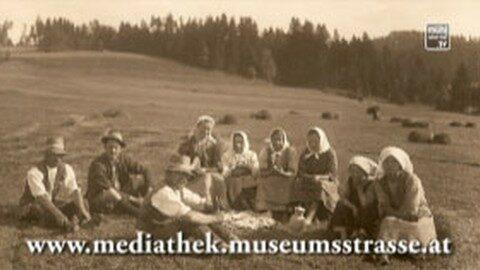 Mediathek Mühlviertel-Südböhmen