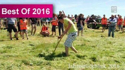Sensenmähwettbewerb in Reichenau