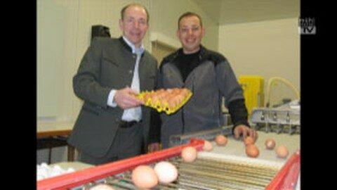 Eier: Beste Qualität aus heimischer Landwirtschaft