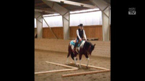 8 Reiterinnen legen Western Riding Certificate ab