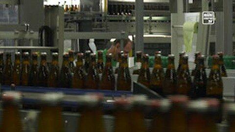 Erstes CO2-frei gebrautes Bier aus Freistadt