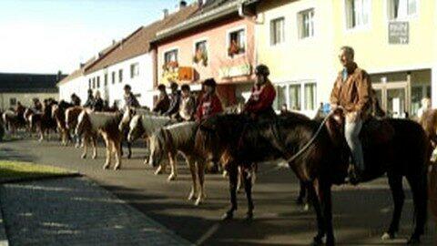 Leonhardiritt und Erbhoffeier in Schenkenfelden