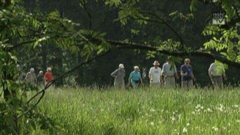 Bezirkswandertag Seniorenbund Urfahr-Umgebung 2014