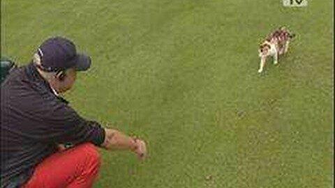 KIWANIS Charity-Golfturnier im Sterngartl
