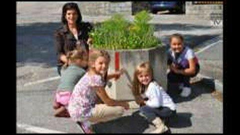 Bunte Blumen und bunte Tröge in Freistadt