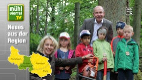 Sanierung der Böhmerwaldschule