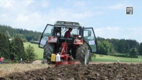 Dürre-Alarm in Oberösterreich