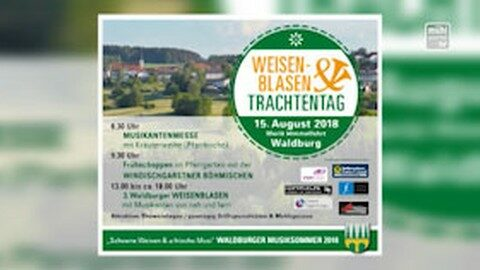 Ankündigung Weisenblasen in Waldburg