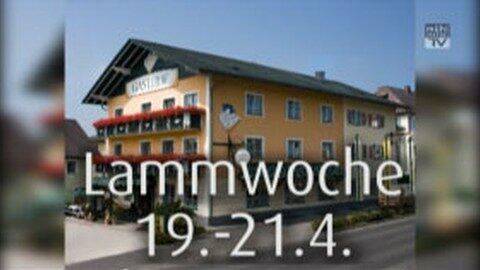 Ankündigung Lammwochen beim GH Blumauer in Rainbach