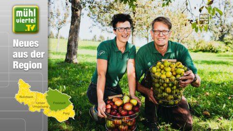 500.000 Liter Apfel & Birnensaft sichern Mühlviertler Streuobstwiesen